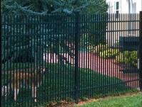 Picture of black aluminum fencing Greenville