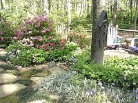 Picture Landscaping Planting - Shrubs, Plants, Trees
